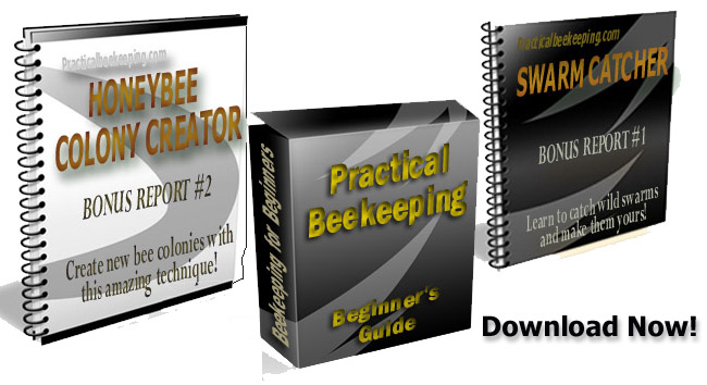Start Beekeeping ebook covers